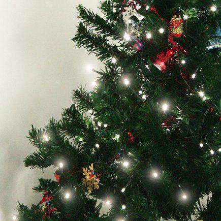 Best Solar Christmas Light