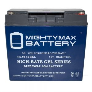 Mighty Max Replacement Battery