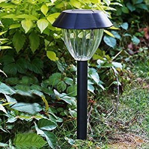 Voona Solar Walkway Light